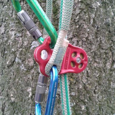 Veilig boom weghalen